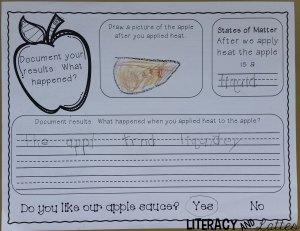 Apple lab sheet back