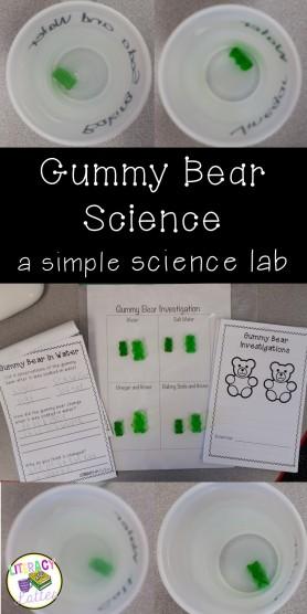 Gummy Bear Science Lab Using the scientific method